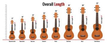 Ukulele-Sizes-Comparison-Chart.jpg